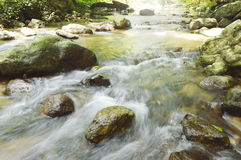 River flowing on cataract and water splashing in forest Royalty Free Stock Image