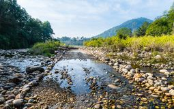 River flowing at Corbett. Stream of water flowing at Jim Corbett National Park Stock Images