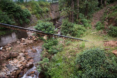 River Flowing Downhill. A river flowing down the hills of Rajamala in Kochi, Kerala. Rocks are seen scattered around the river. On the background, lush Royalty Free Stock Images