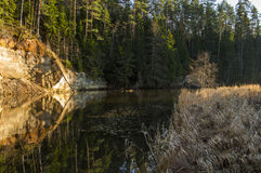River flowing in Estonia. River with high banks flowing trough Estonia Stock Photography