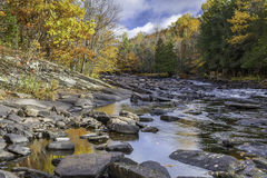 River Flowing Through a Forest in Autumn - Ontario, Canada. Oxtongue River in autumn with vibrant fall colors reflecting on its surface - Ontario, Canada stock images