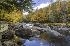 River Flowing Through a Forest in Autumn - Ontario, Canada. Oxtongue River in autumn with vibrant fall colors reflecting on its surface - Ontario, Canada Royalty Free Stock Image