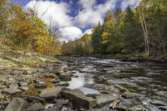 River Flowing Through a Forest in Autumn - Ontario, Canada Royalty Free Stock Photo