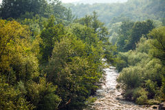 River flowing through forest. Landscape with a river flowing through a forest Royalty Free Stock Photos