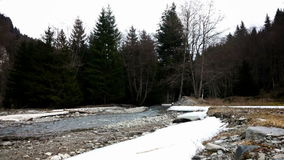 River flowing through a forest in winter stock video footage