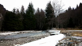 River flowing through a forest in winter stock video