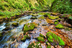 River flowing through a gorge Royalty Free Stock Image