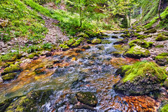 River flowing through a gorge Royalty Free Stock Photos