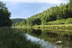 River flowing through green forest landscape. The Ourthe is finding it's way through the Belgium Ardennes stock image
