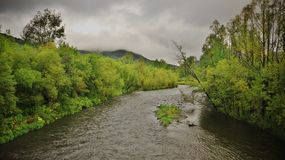 The river is flowing among green trees. And mountains Stock Images