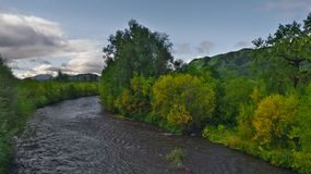 The river is flowing among green trees Stock Photo