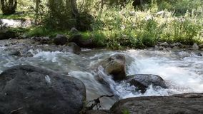 River in the mountains of Almaty city stock video footage