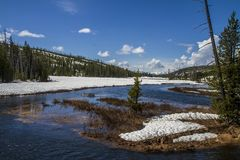 River flowing inside Yellowstone royalty free stock image