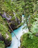 River flowing through the Leutasch Gorge Royalty Free Stock Images