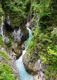 River flowing through the Leutasch Gorge Stock Images