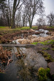 River flowing through meadow at autumn Stock Photography