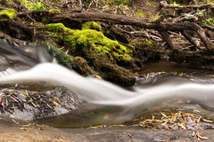 River flowing Moss. A long exposure photo of a small river flowing down with some green moss next the water Royalty Free Stock Photos