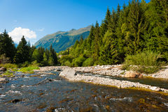 River flowing through a mountain forest. Royalty Free Stock Photography