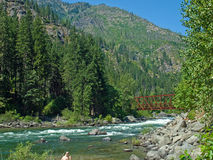 A River Flowing Through a Mountain Forest Royalty Free Stock Images