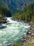 A River Flowing Through a Mountain Forest Stock Images