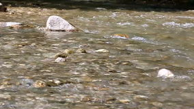 River flowing stock footage