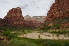 River flowing between mountain in zion canyon royalty free stock images