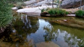River flowing in a National Park of Madrid Royalty Free Stock Photos