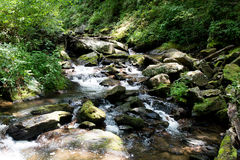 River Flowing. A river flowing through the north Georgia mountains Stock Photos