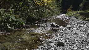 River flowing over rocks in a beautiful forest. Stream flowing over rocks in a beautiful forest stock video