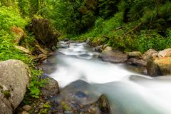 River flowing through rocks and beautiful green forest, Fagaras moutains, Romania royalty free stock image
