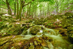 River flowing through rocks Stock Images