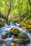 River flowing through rocks. Landscape with river flowing through the forest on mountains Royalty Free Stock Photo