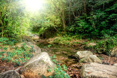 River flowing through rocks and a large stone. Mysterious river flowing through rocks and a large stone in jungle of Khao Sok National Park, Surat Thani Province Stock Photo