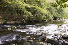 River flowing with rocks and trees Stock Photo