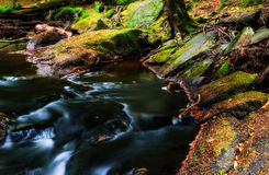 River Flowing by Rocky Banks Stock Images