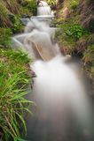 River flowing. Small river flowing in mountain area Royalty Free Stock Photos