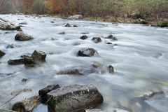 River flowing Royalty Free Stock Photos
