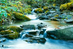 River flowing through stony bottom. Beautiful waterfall landscape. The water stream flowing over rocks. Beautiful mountain river landscape Royalty Free Stock Image