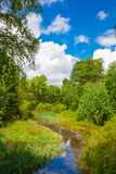 River flowing in Trei Ape Lake in Semenic Mountains Stock Images