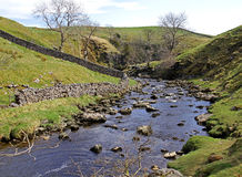 River flowing through a valley Royalty Free Stock Image