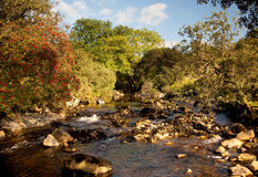 River flowing in welsh valley. Rocky river bed in secluded valley stock image
