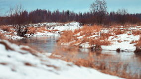 River flowing through the winter forest Stock Images