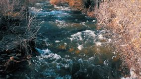 A River Flows Alongside Leafless Trees in a Beautiful Scene in Autumn stock video footage