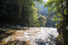 River flows down Royalty Free Stock Image
