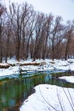 The river that flows in the forest in winter. stock image