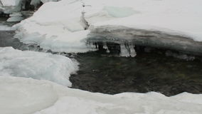 River flows through the ice and snow of winter. Clear water, stones on the bottom stock footage