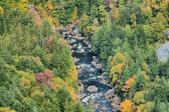 River flows within the mountain. Blackwater River flows through the mountain. The river has the darker color from salt rock sediment on the rock bed from many Stock Photo