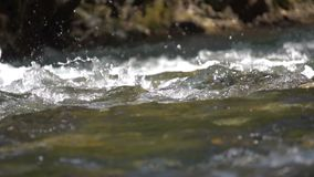 A river flows over rocks. In this beautiful scene stock video