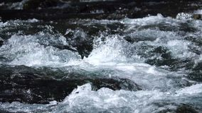 A river flows over rocks. In this beautiful scene stock video footage