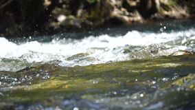 A river flows over rocks. In this beautiful scene stock footage